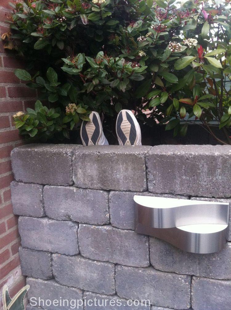 Shoeingpictures.com: Shoeing the Garden